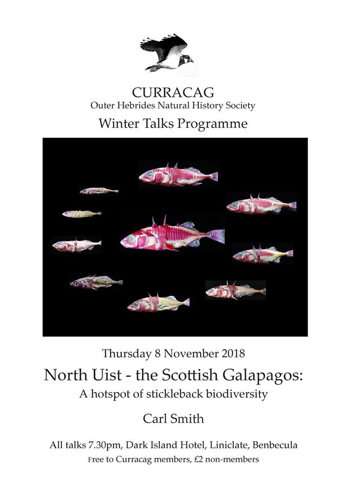 outer hebrides carl smith sticklebacks talk curracag
